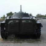 BMP-1 -8